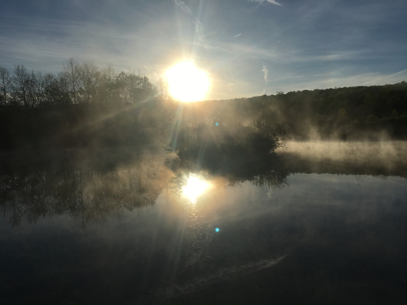Powdermill.morning pond